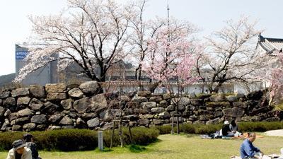 愛宕山:田辺城跡から