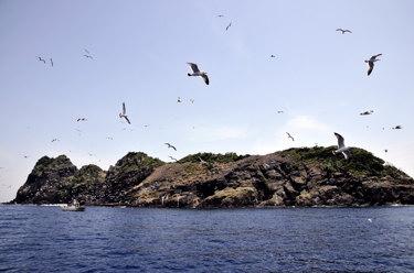 沓島(南側より)
