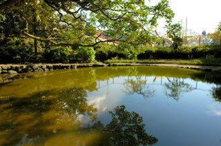 丸田の池(先は保育園。手前が神社)