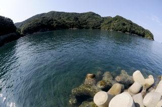 水ケ浦の海